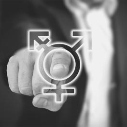 Intégration du genre dans les organisations