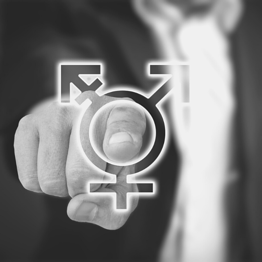 Web Séminaire sur l'Intégration systématique du genre dans les organisations